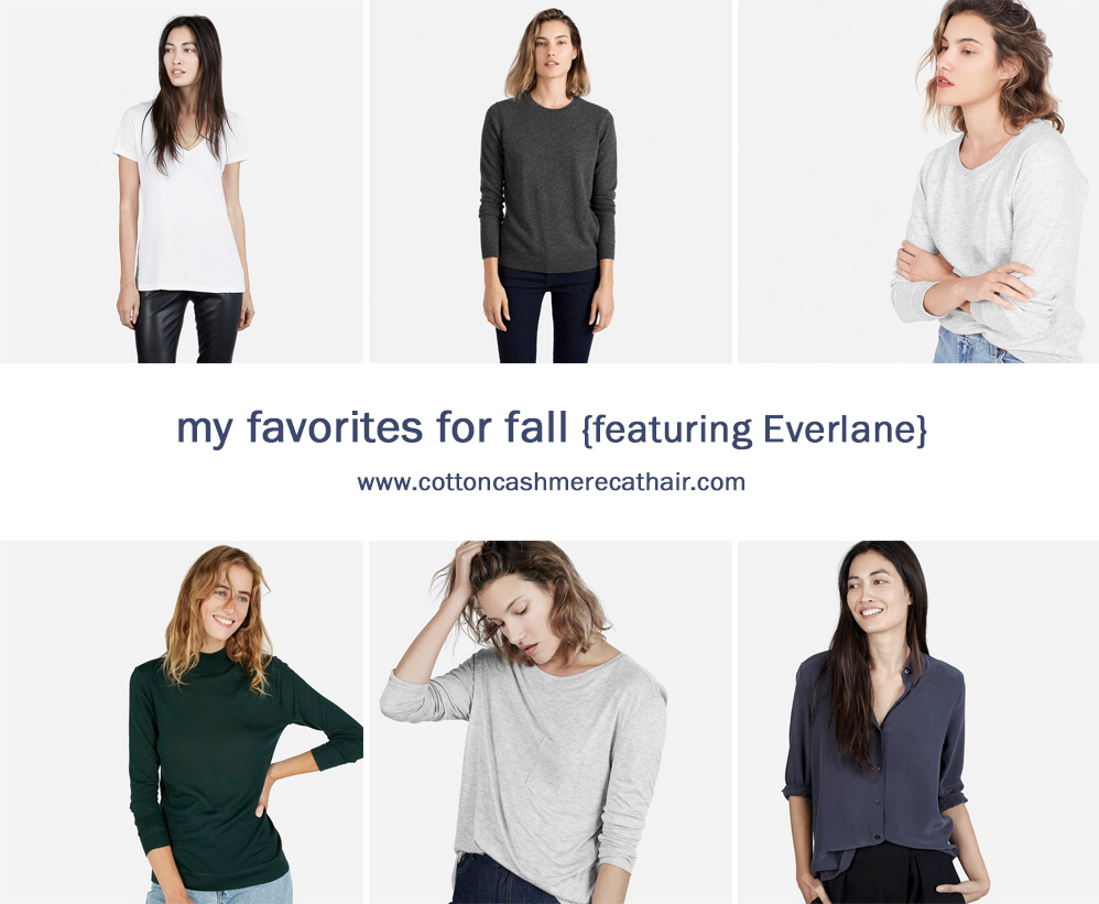Favorite fall finds from Everlane -- Cotton Cashmere Cat Hair