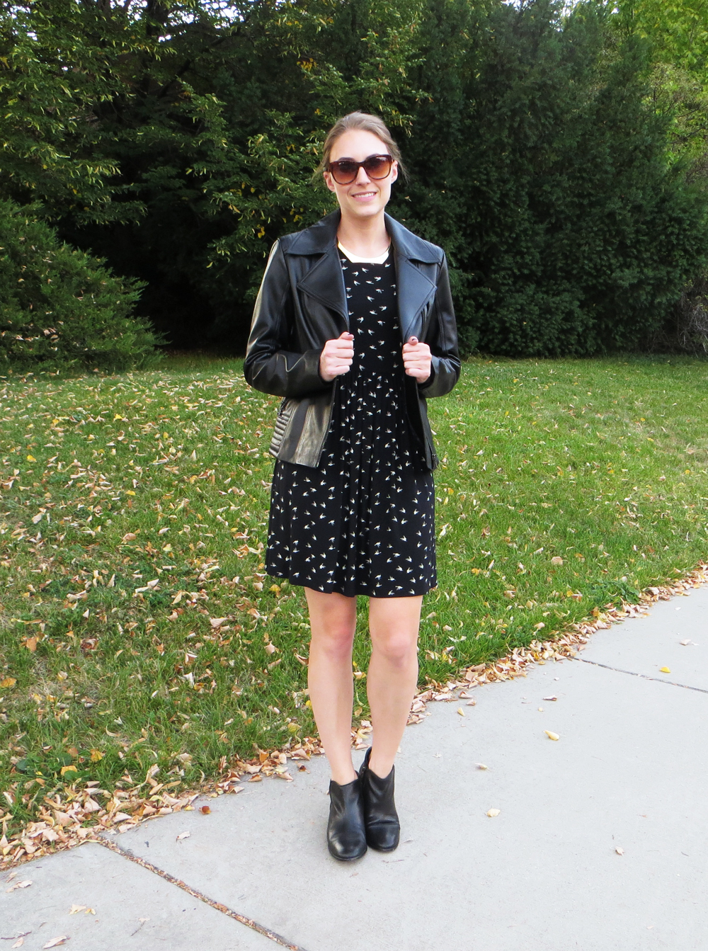 Black leather jacket,  bird-print dress, black ankle boots, gold choker -- Cotton Cashmere Cat Hair