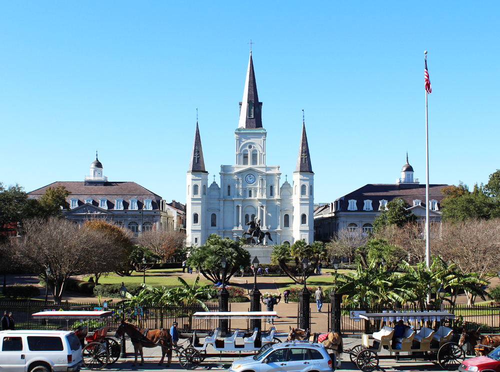 Jackson Square and St. Louis Cathedral, New Orleans — Cotton Cashmere Cat Hair