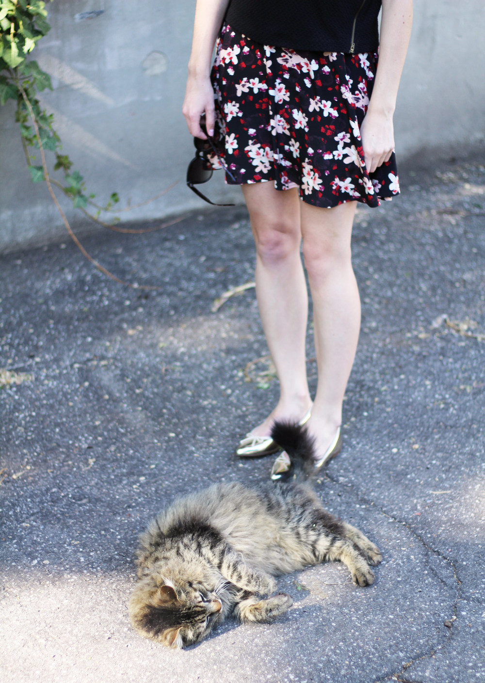 Kitty friend / dark floral skirt + metallic gold flats — via Cotton Cashmere Cat Hair