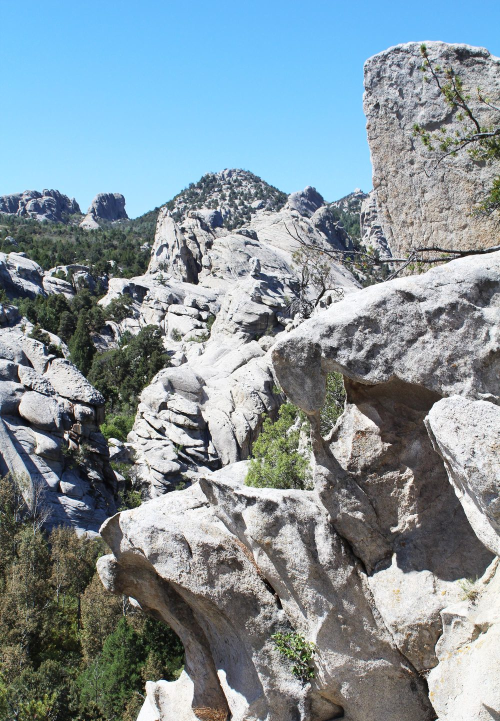 City of Rocks National Reserve, Idaho — via Cotton Cashmere Cat Hair