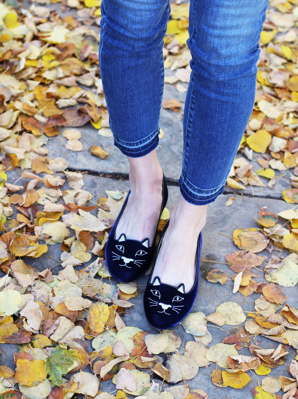 Charlotte Olympia navy 'Kitty' flats — Cotton Cashmere Cat Hair