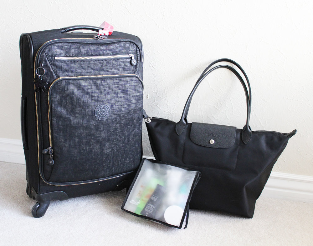 Travel essentials: Carry-on wheeled luggage, Longchamp bag, reusable quart bag — Cotton Cashmere Cat Hair