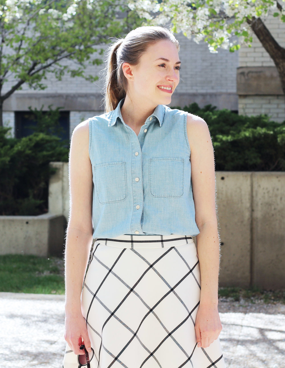 Sleeveless chambray shirt outfit with windowpane skirt — Cotton Cashmere Cat Hair