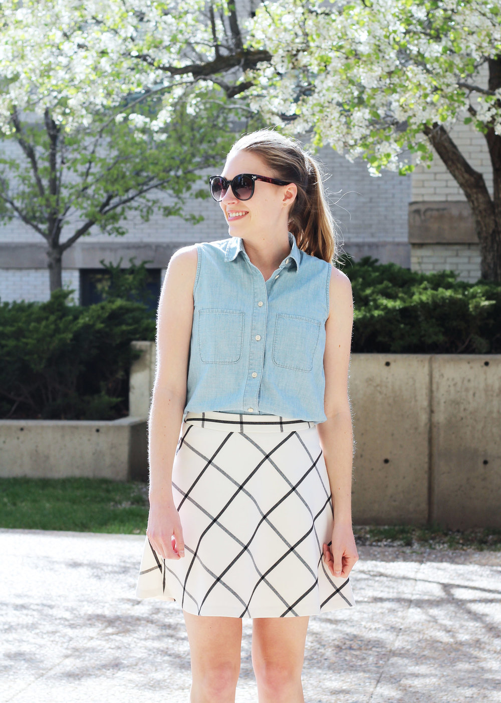 Spring outfit with sleeveless chambray shirt and windowpane skirt — Cotton Cashmere Cat Hair