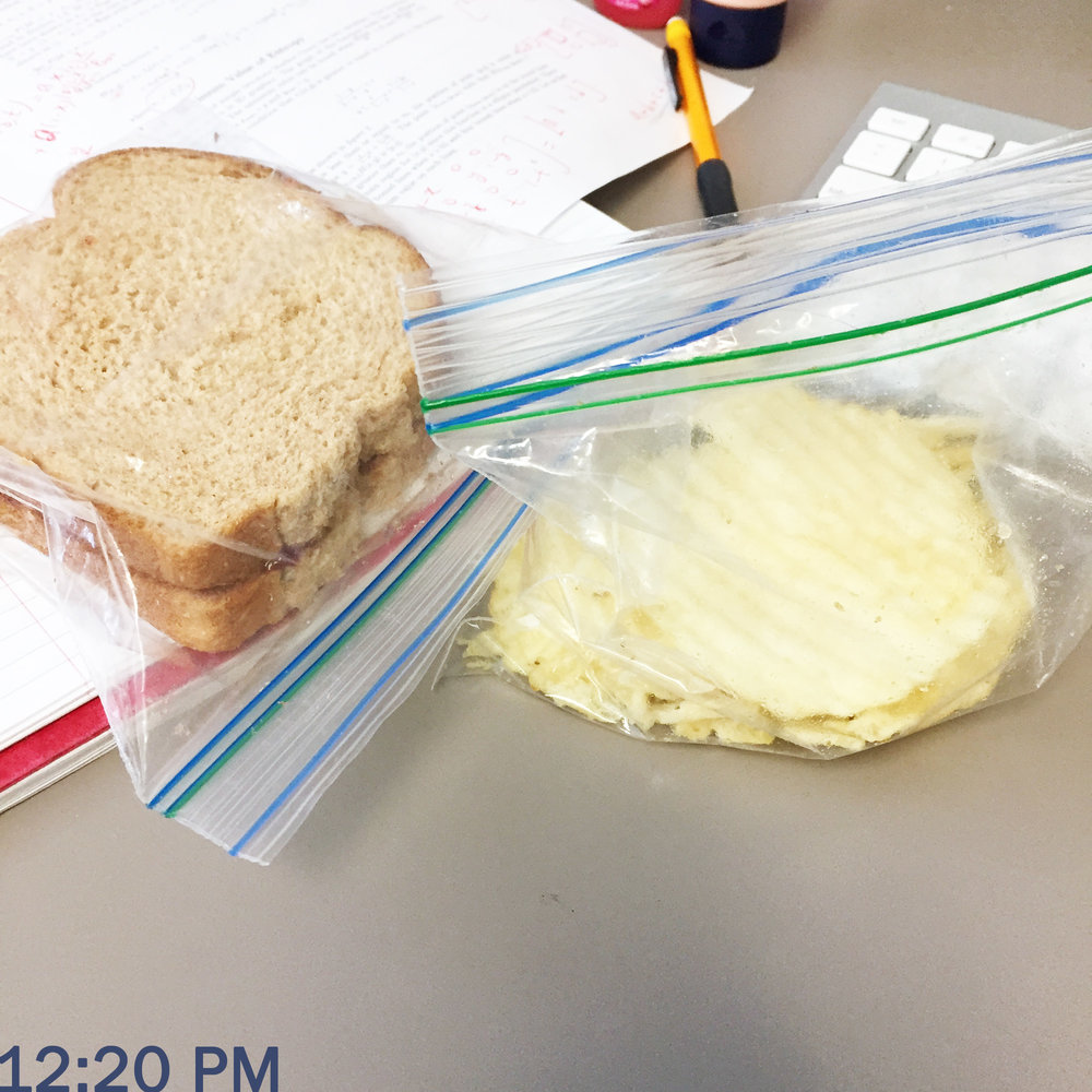 Day in the life of a PhD student: Lunchtime — Cotton Cashmere Cat Hair