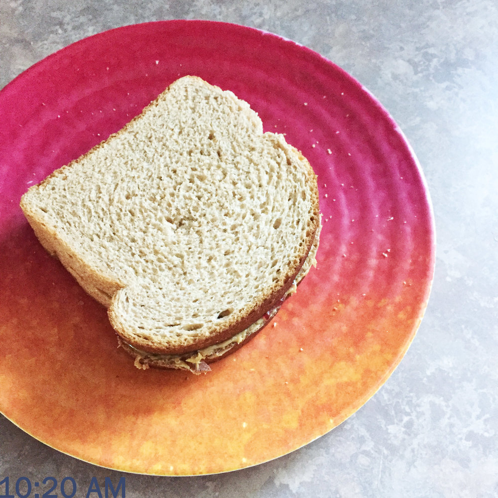 Day in the life of a PhD student: Making a pb&j sandwich for lunch — Cotton Cashmere Cat Hair