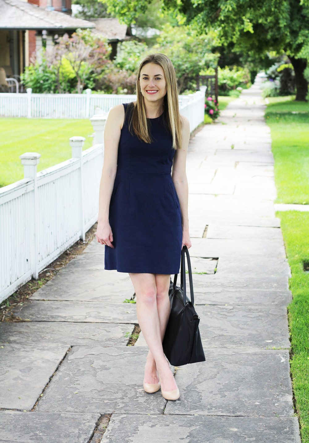 Professional outfit for grad school with sheath dress, nude pumps, Longchamp tote — Cotton Cashmere Cat Hair