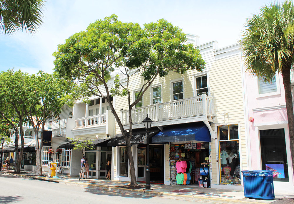 Duval Street, Key West, Florida — Cotton Cashmere Cat Hair