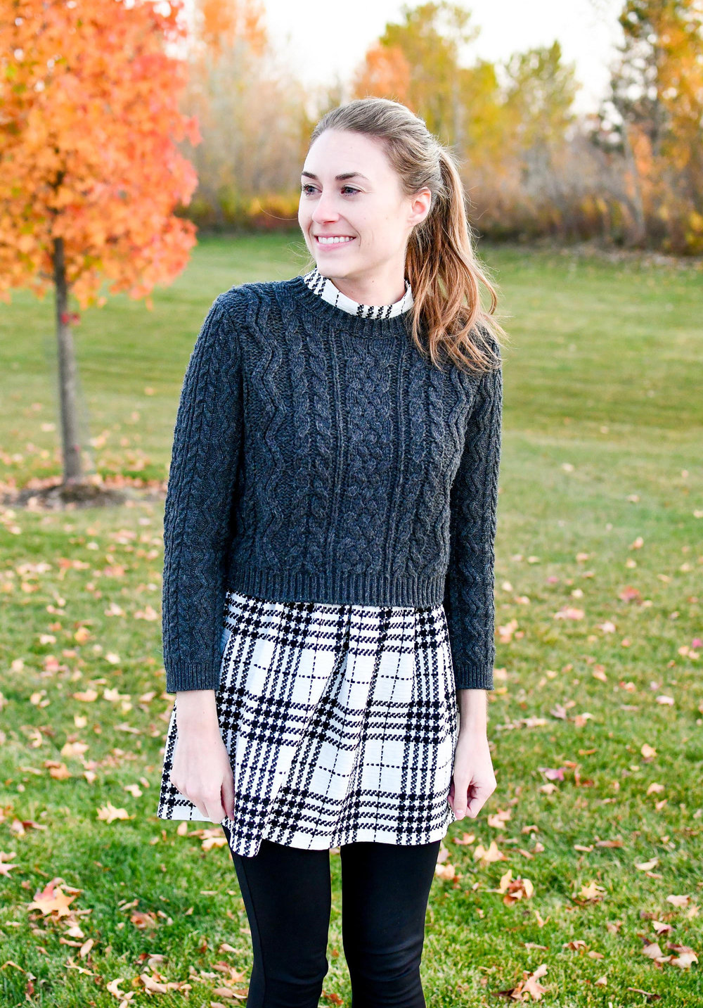 Fall outfit with cropped sweater and plaid dress — Cotton Cashmere Cat Hair