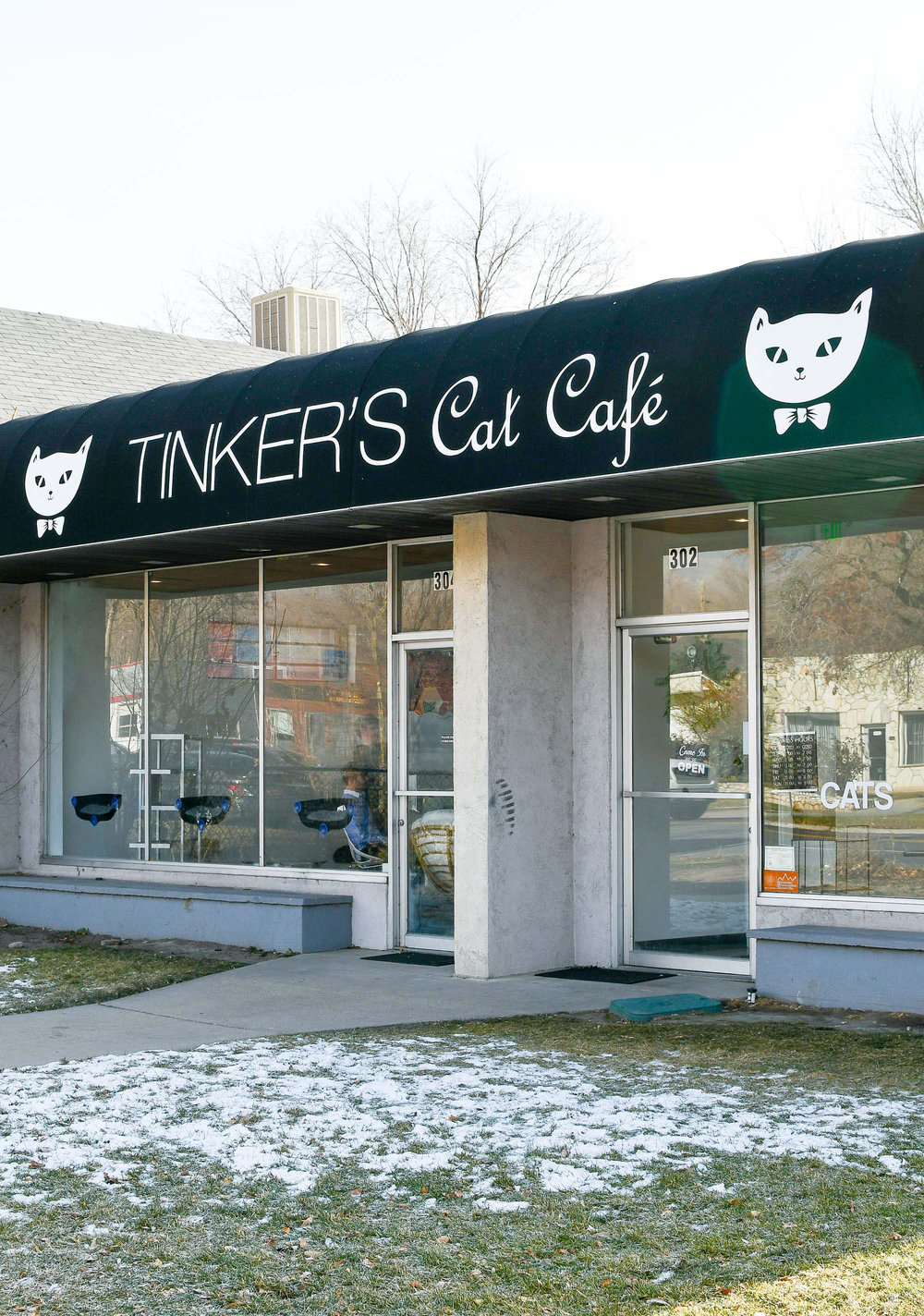 Tinker's Cat Cafe, Salt Lake City, Utah — Cotton Cashmere Cat Hair
