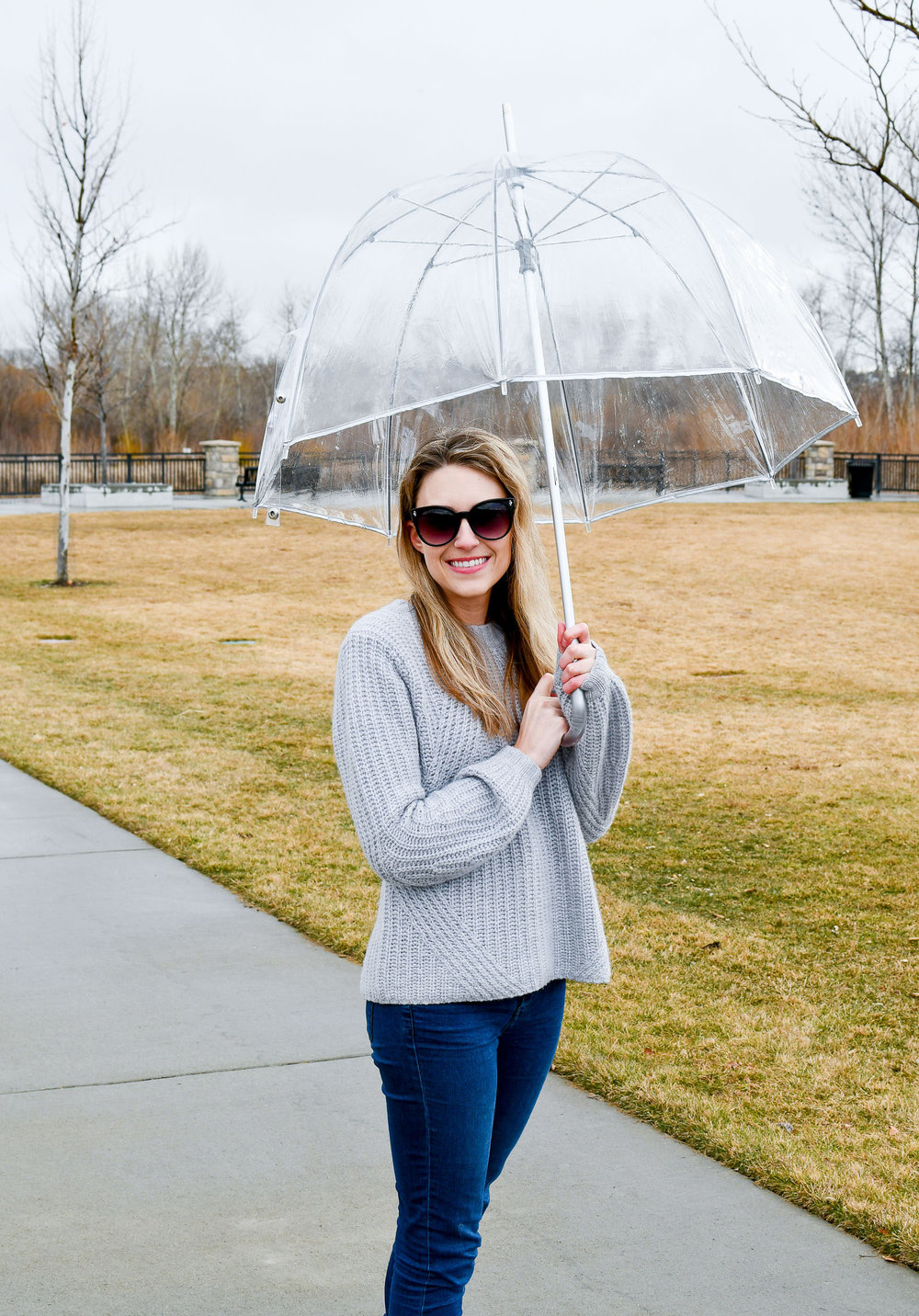 Rainy day outfit with clear umbrella — Cotton Cashmere Cat Hair