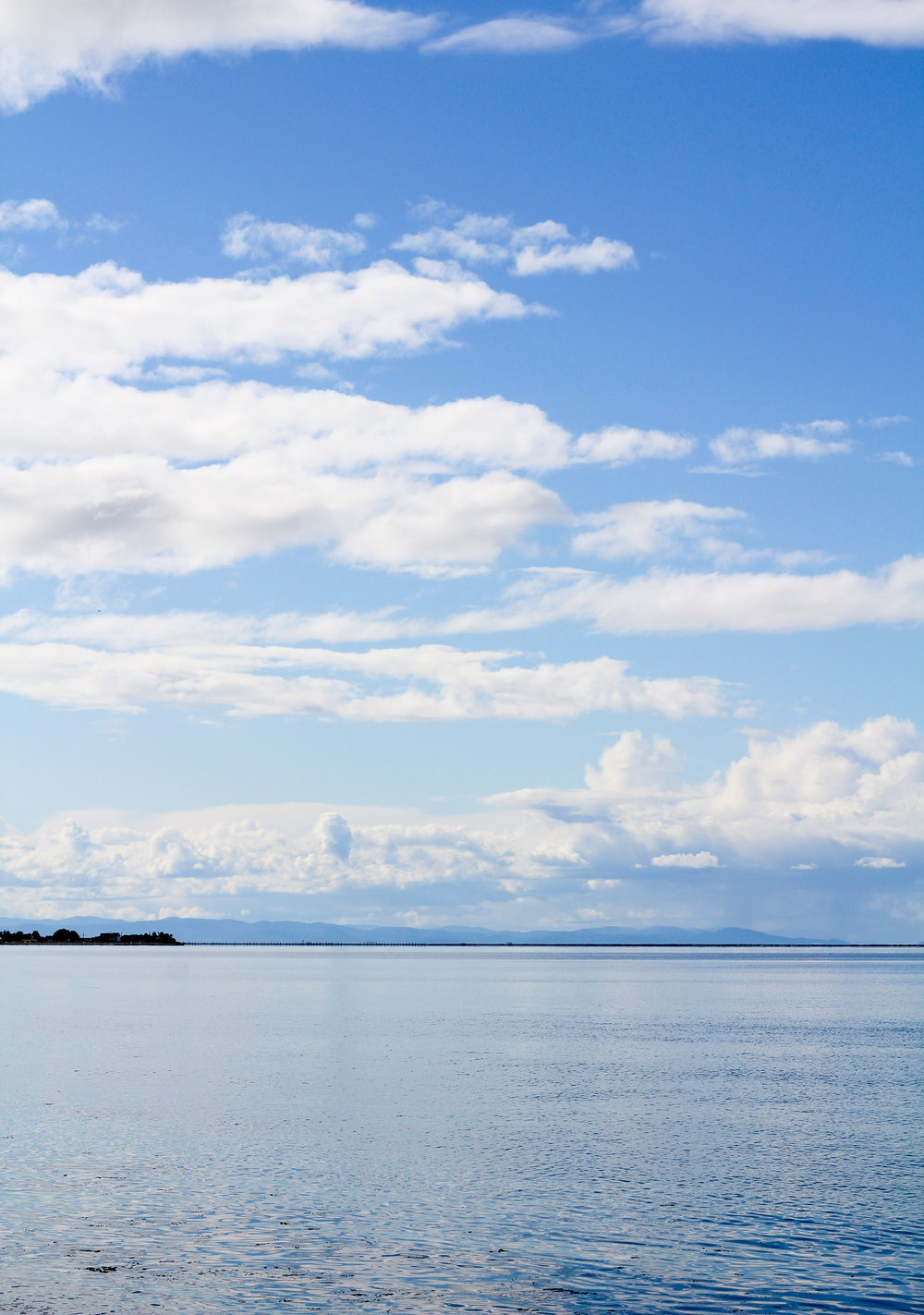 View of Vancouver Island from Sequim, Washington — Cotton Cashmere Cat Hair
