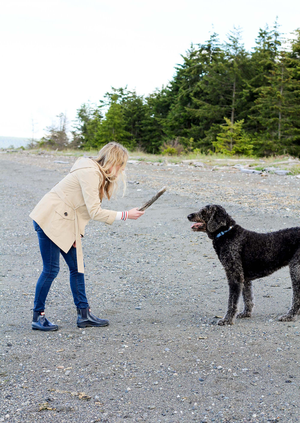 Playing with Marley on the beach in Sequim, Washington — Cotton Cashmere Cat Hair