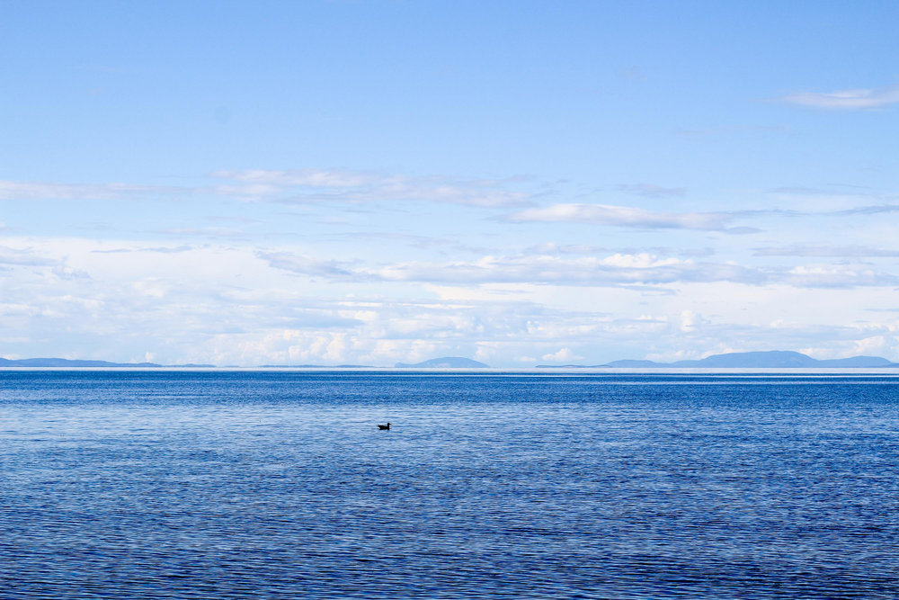 San Juan Islands from Sequim, Washington — Cotton Cashmere Cat Hair
