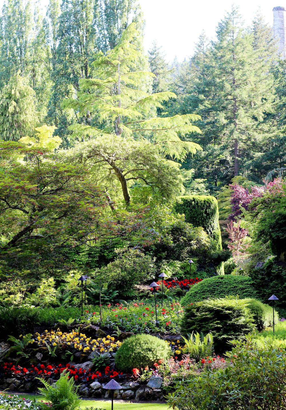 Sunken Garden at The Butchart Gardens, British Columbia — Cotton Cashmere Cat Hair