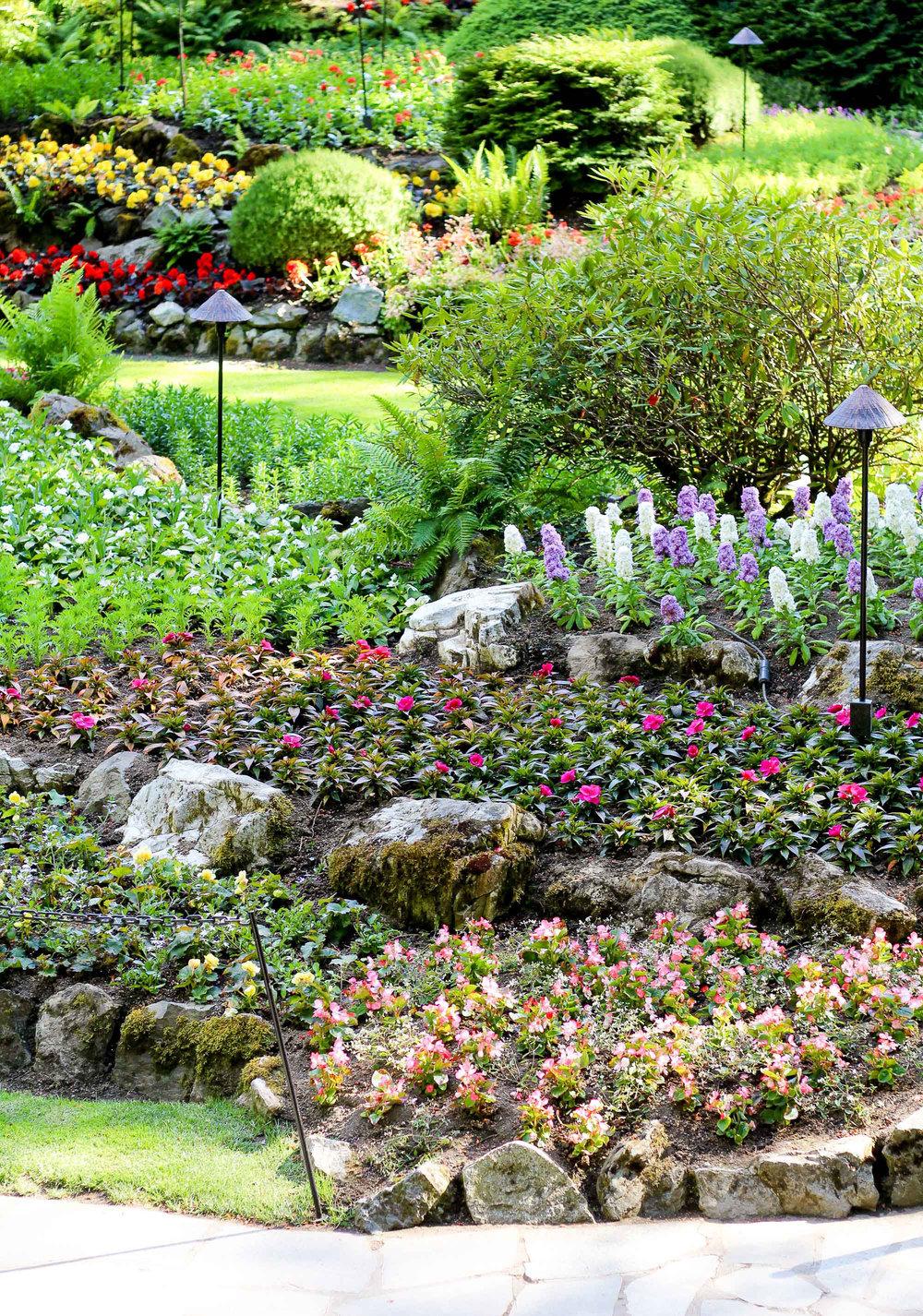 Flowers in the Sunken Garden at The Butchart Gardens — Cotton Cashmere Cat Hair