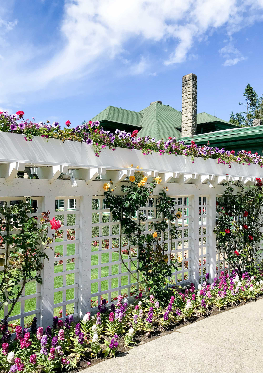 Trellis at the dining room in Butchart Gardens — Cotton Cashmere Cat Hair