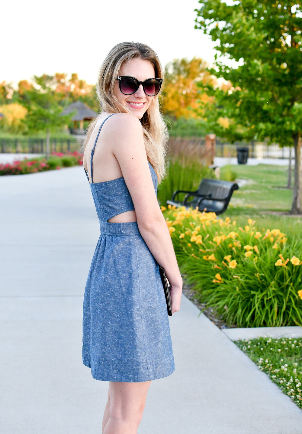 Madewell chambray cut-out dress outfit — Cotton Cashmere Cat Hair