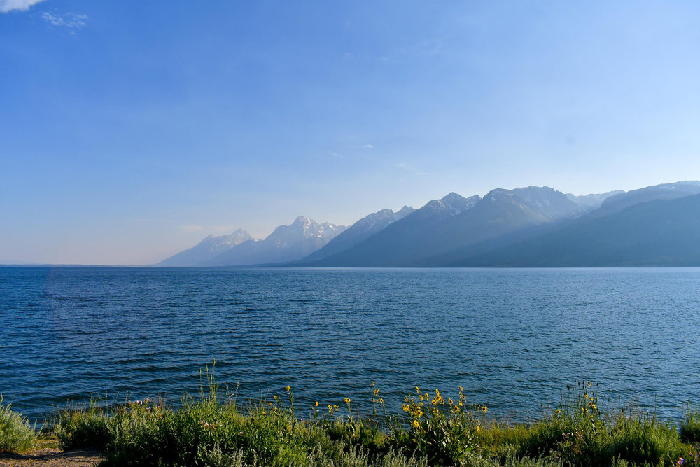 Jackson Lake, Grand Teton National Park — via Cotton Cashmere Cat Hair