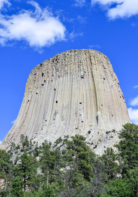 Devils Tower, Wyoming — via Cotton Cashmere Cat Hair