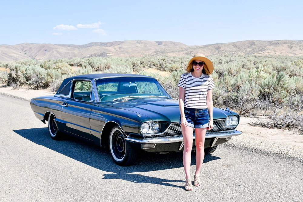 Retro summer outfit with Thunderbird — Cotton Cashmere Cat Hair