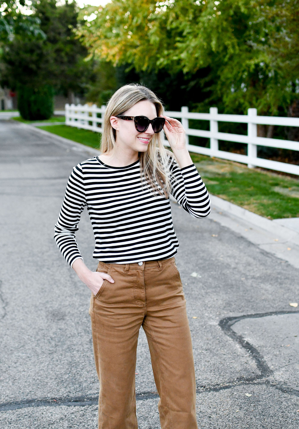 Striped tee fall outfit with tan wide leg pants — Cotton Cashmere Cat Hair