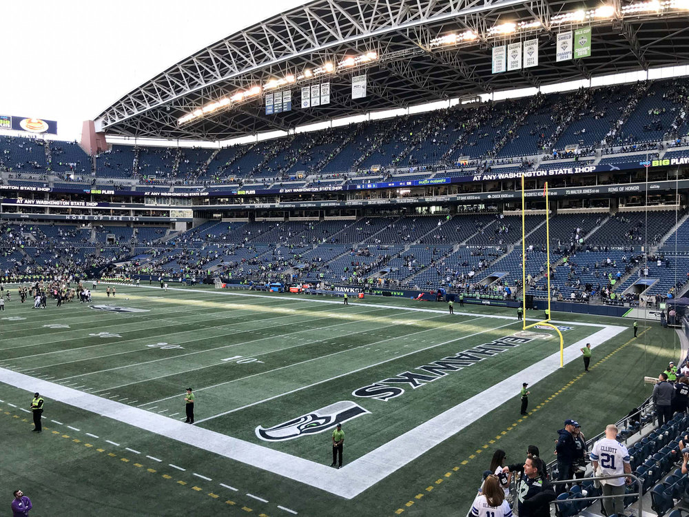 CenturyLink Field in Seattle, WA — Cotton Cashmere Cat Hair