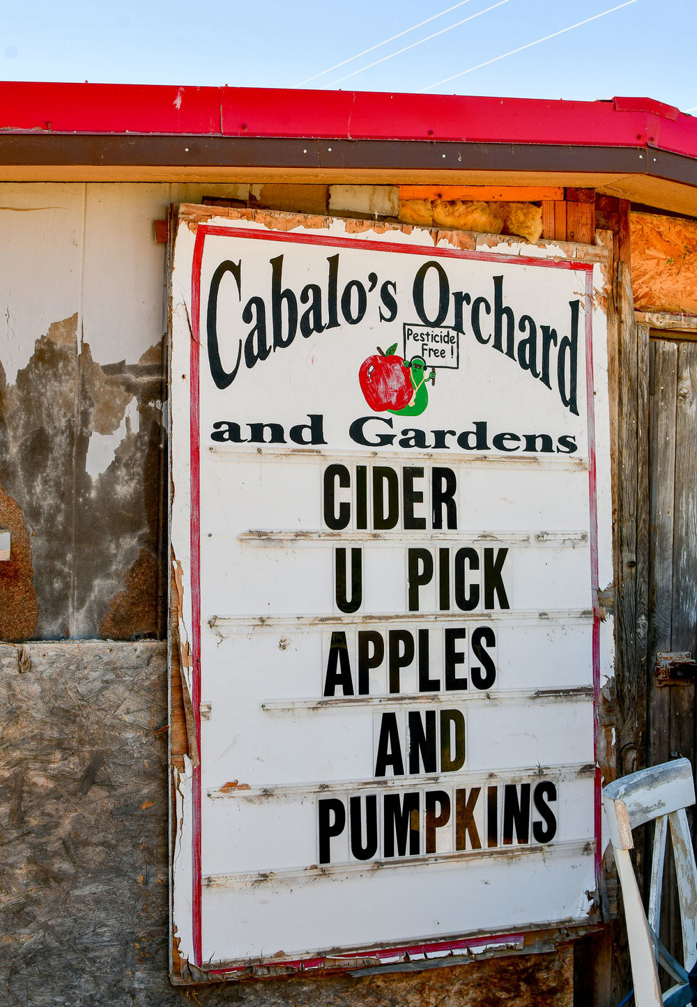 Cabalo's Orchard and Gardens, Kuna, Idaho — Cotton Cashmere Cat Hair