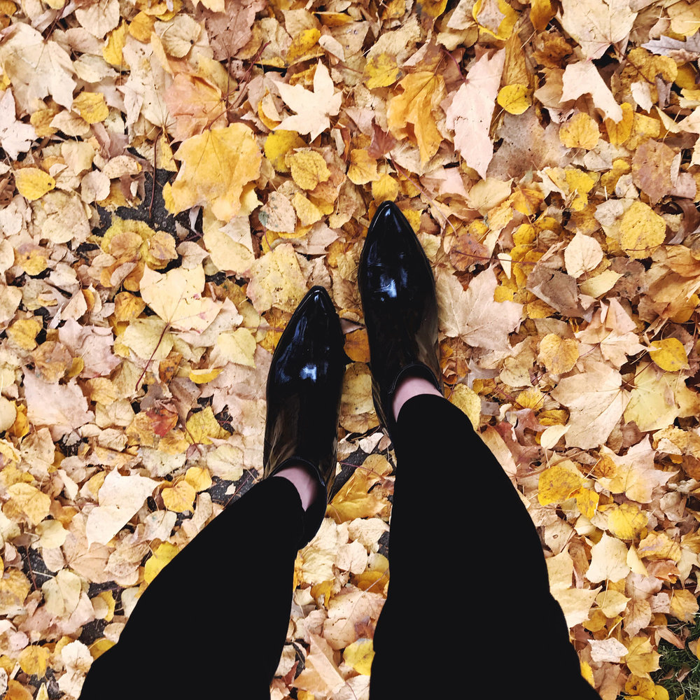 Shiny ankle boots and fall leaves (via Instagram) — Cotton Cashmere Cat Hair