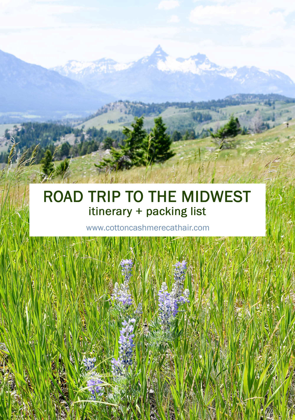 2018 travel: Road trip to the midwest — Cotton Cashmere Cat Hair