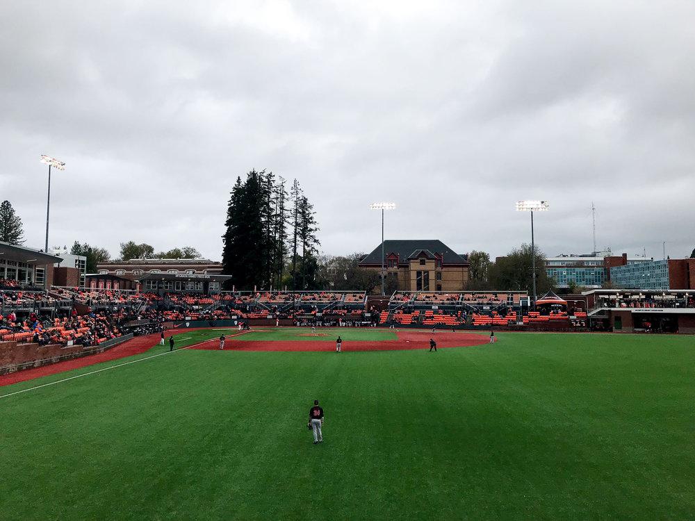 Oregon State baseball versus Utah, April 2019 — Cotton Cashmere Cat Hair