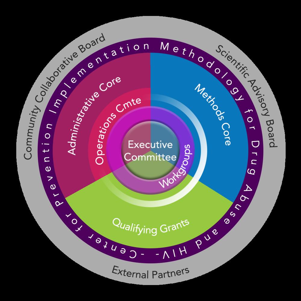 CePIM Organization Structure-12.png