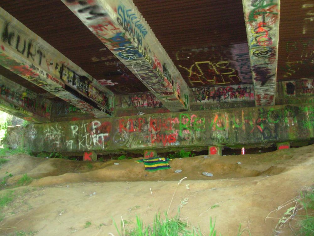 Under the bridge where Kurt Cobain hung out in Aberdeen, Washington.