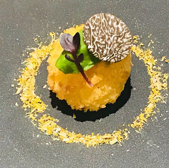 Truffle Potato Croquette | Fennel | Leek | Truffle #foodart #foodporn #foodnetwork #foodandwine #foodstagram #foodart #chefs #chefsroll #chefsclub #chefslife #chefstatus #canapes #croquette #potato #truffle #fdlmoment #truecooks #thebestoftheday #theartofplating #lobsterreeflp #purplesaigetemptations #chefsoninstagram #chefsofinstagram #foodart