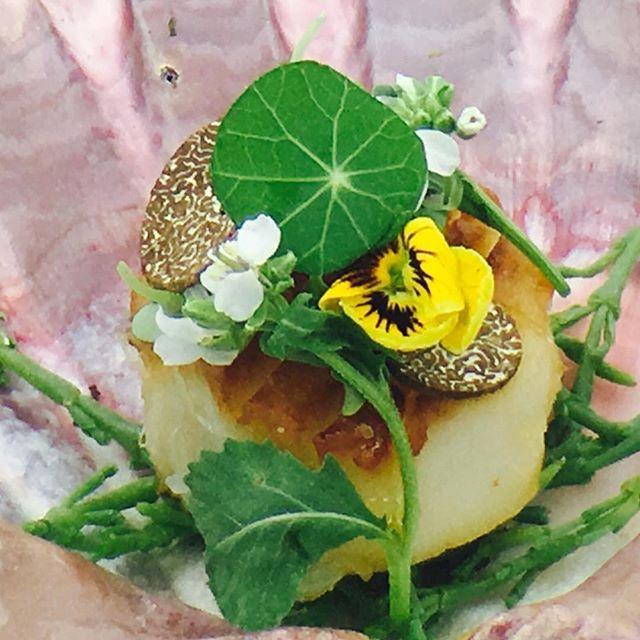 Lightly Seared Japanese Hotate Scallop, Truffle Dashi, Petit Greens. #hotate #scallops #simplistic_food #cookniche #chefs #chefsroll #chefsclub #chefslife #chefstatus #chefstalk #gourmet #gourmetfood #fdlmoment #foodporn #foodphotography #foodandwine #foodstagram #foodnetwork #foodart #lobsterreeflp #purplesaigetemptations #chefrobborden #theartofplating #thebestoftheday