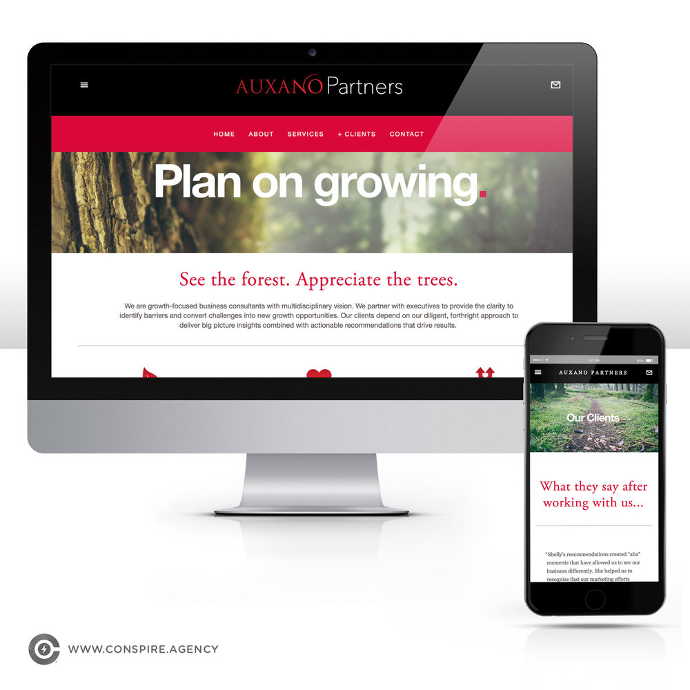 Auxano-Partners-Branding-Website-Design