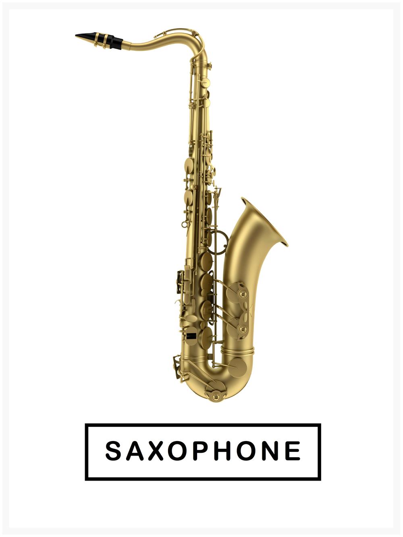Burlingame-music-lessons-sax.jpg