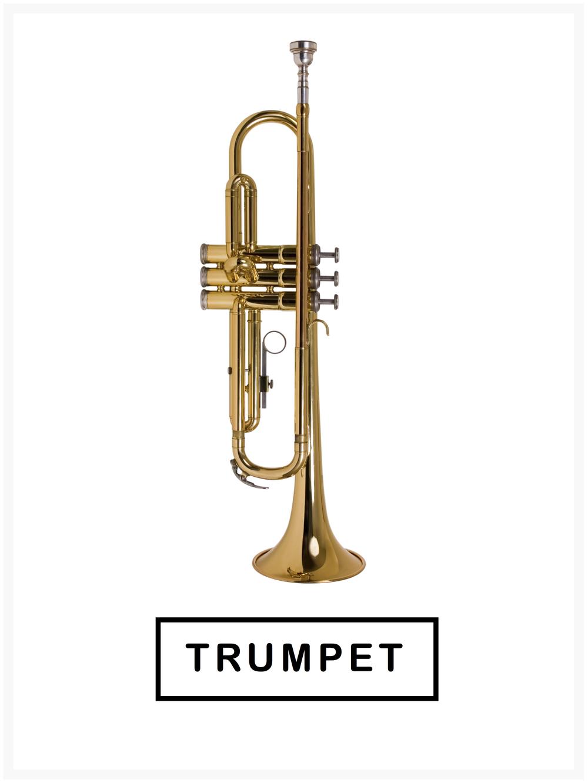 Trumpet Lessons High School