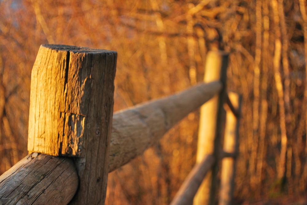 _fence.jpg