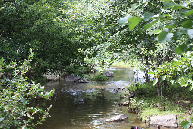 Saucony Creek, near Kutztown, PA