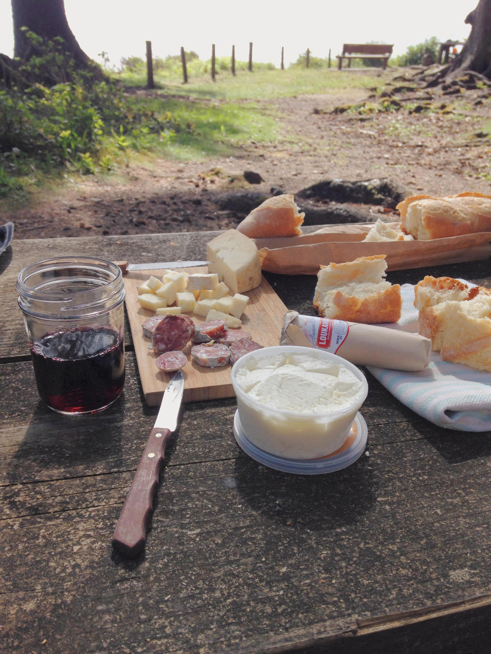 oregon-picnic