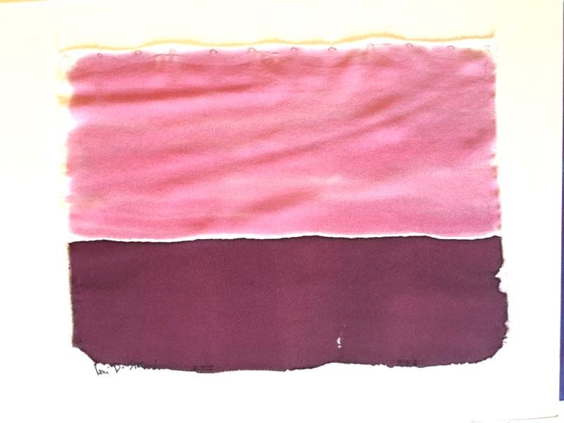 650.Dollars-Rose+Burgundy-2017 copy.jpeg