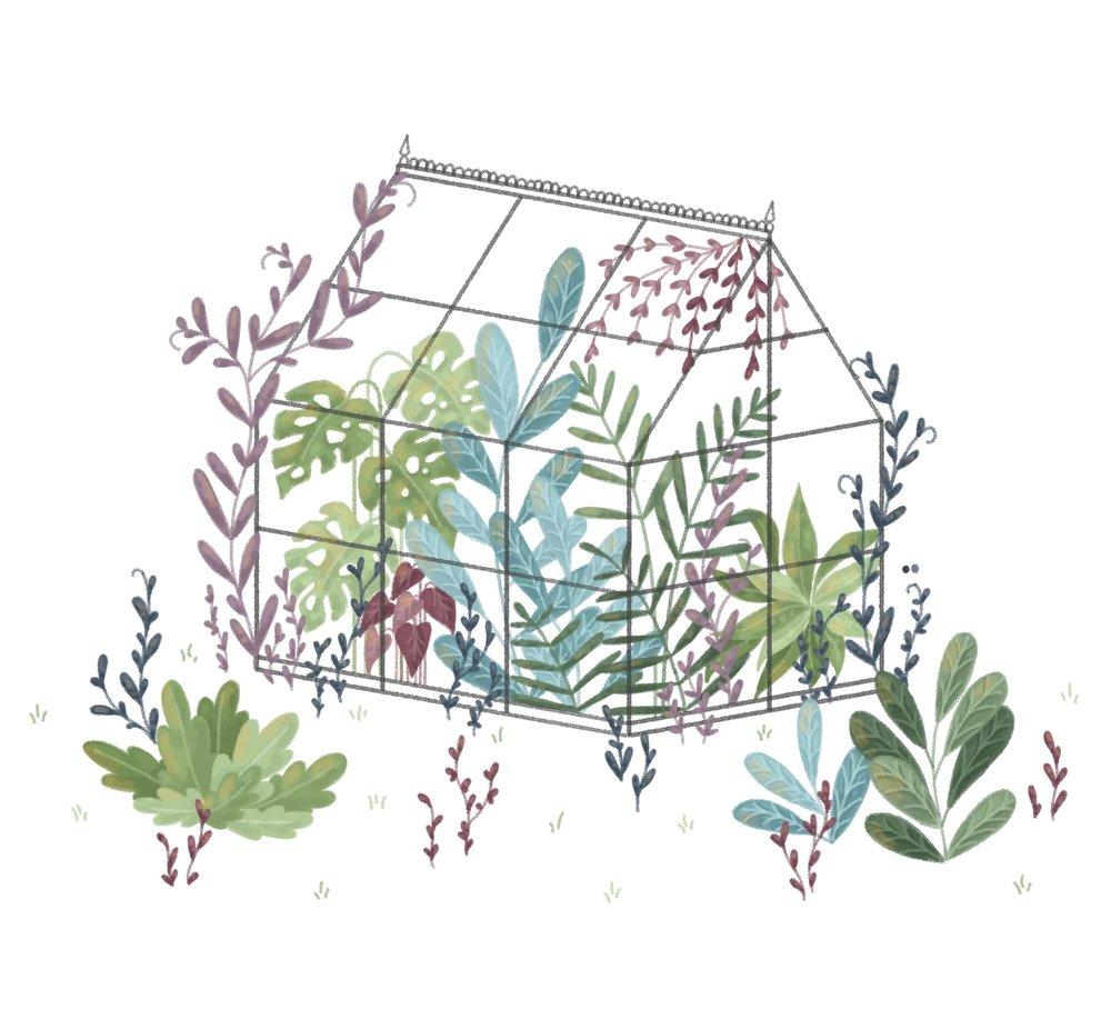 Illustrated greenhouse inspired by a visit to Kew Gardens.