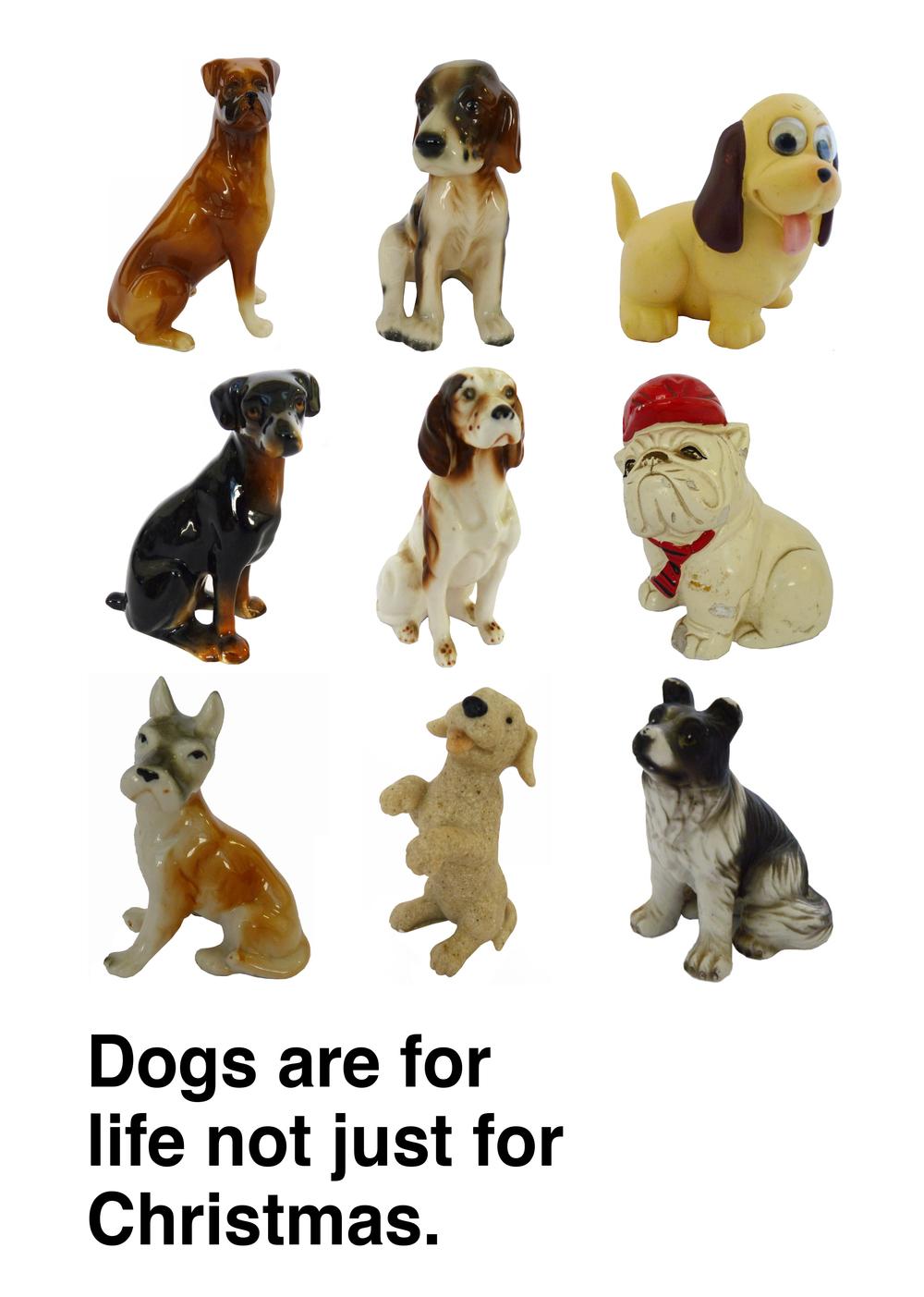 dogspost.jpg