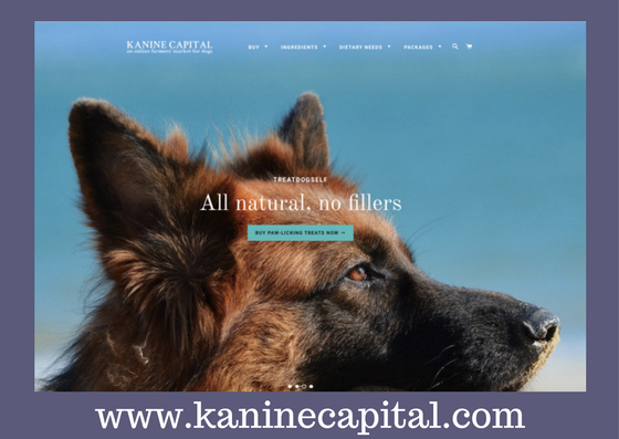 Kanine Capital.png