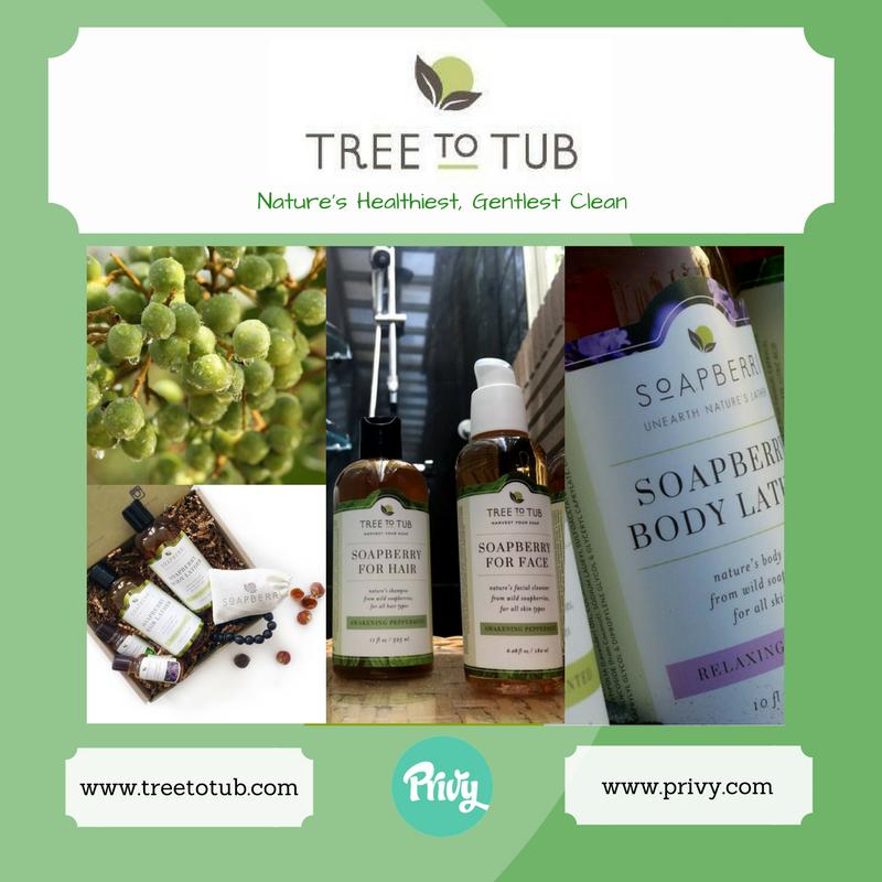 TreeToTub.png