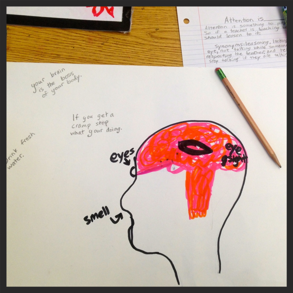 A student reflected on things she knew about the brain and brain health during a classroom outreach.