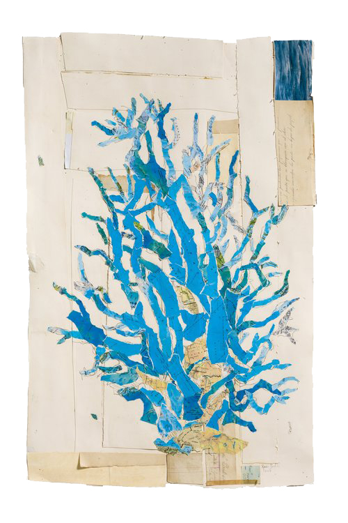 Blue Coral Study ,  2017 Watercolor with graphite on antique papers and maps 36 x 28 in.