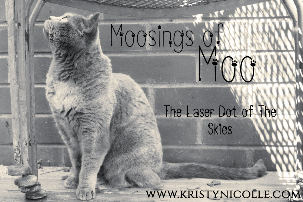 MOOSINGS OF MOO- LASER DOT OF THE SKIES BANNER.jpg